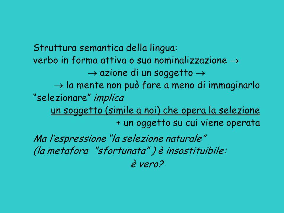 Struttura semantica della lingua: verbo in forma attiva o sua nominalizzazione   azione di un soggetto   la mente non può fare a meno di immaginar