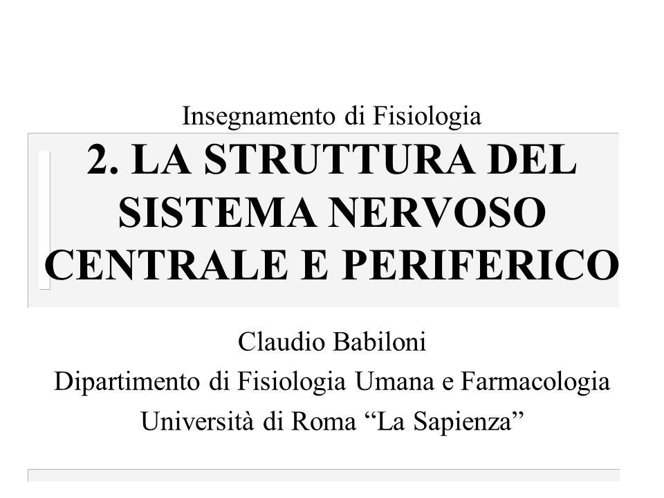Insegnamento di Fisiologia 2.
