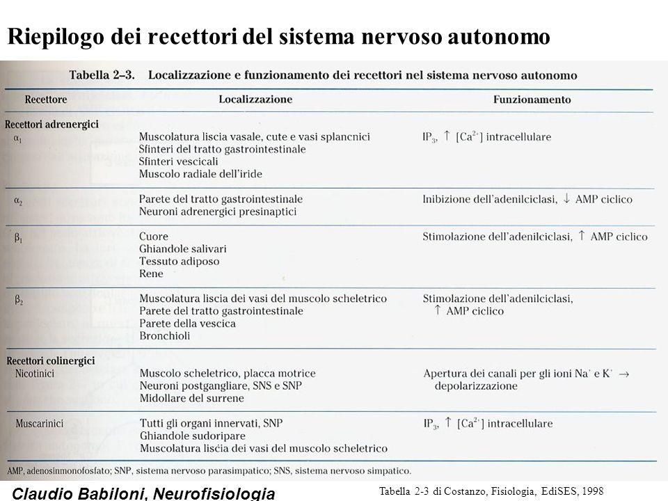 Claudio Babiloni, Neurofisiologia Riepilogo dei recettori del sistema nervoso autonomo Tabella 2-3 di Costanzo, Fisiologia, EdiSES, 1998
