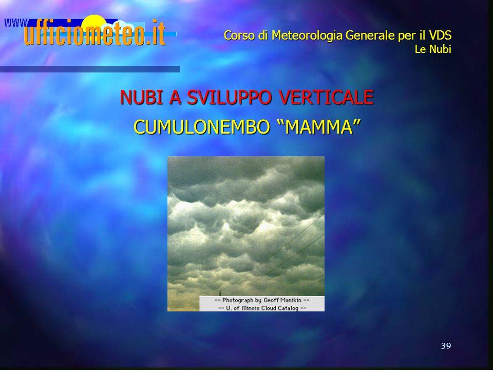 "39 Corso di Meteorologia Generale per il VDS Le Nubi NUBI A SVILUPPO VERTICALE CUMULONEMBO ""MAMMA"""