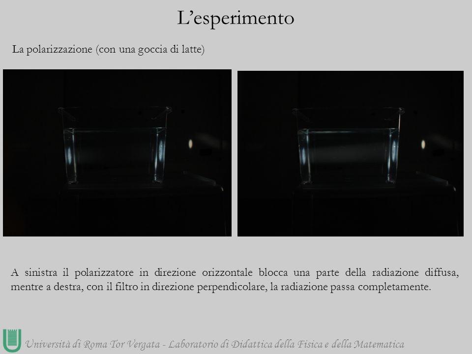 Università di Roma Tor Vergata - Laboratorio di Didattica della Fisica e della Matematica La polarizzazione (con una goccia di latte) L'esperimento A