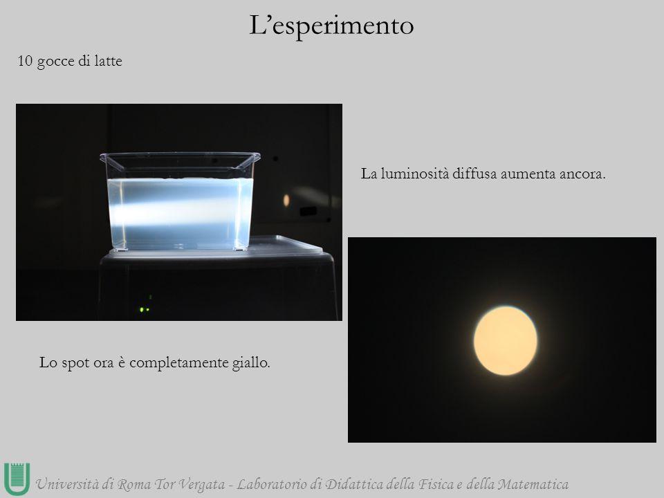 Università di Roma Tor Vergata - Laboratorio di Didattica della Fisica e della Matematica 10 gocce di latte L'esperimento Lo spot ora è completamente