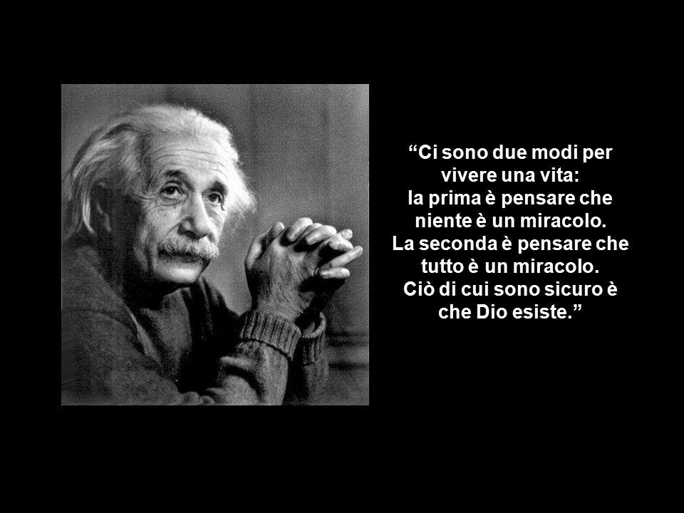 Ci sono solo due cose infinite, l'Universo e la stupidità umana, però non sono molto sicuro della prima.