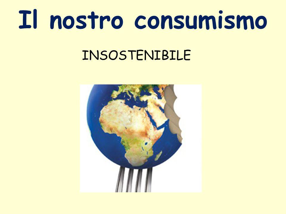 Il nostro consumismo INSOSTENIBILE