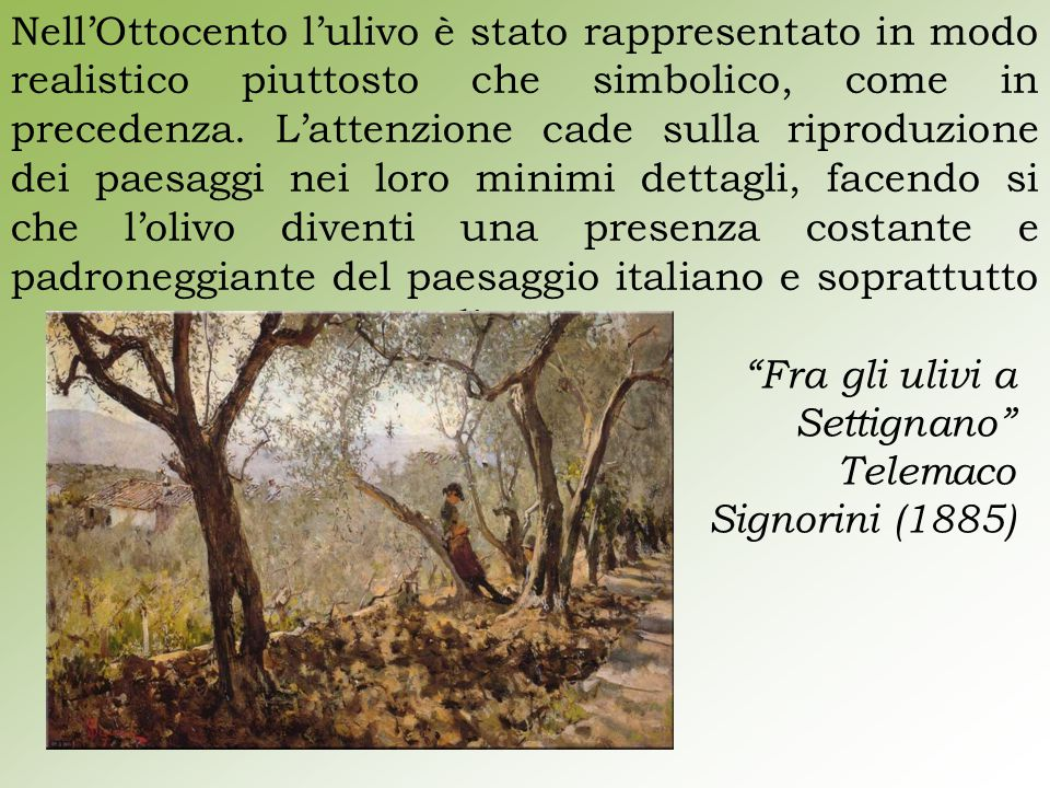 Nell'Ottocento l'ulivo è stato rappresentato in modo realistico piuttosto che simbolico, come in precedenza. L'attenzione cade sulla riproduzione dei