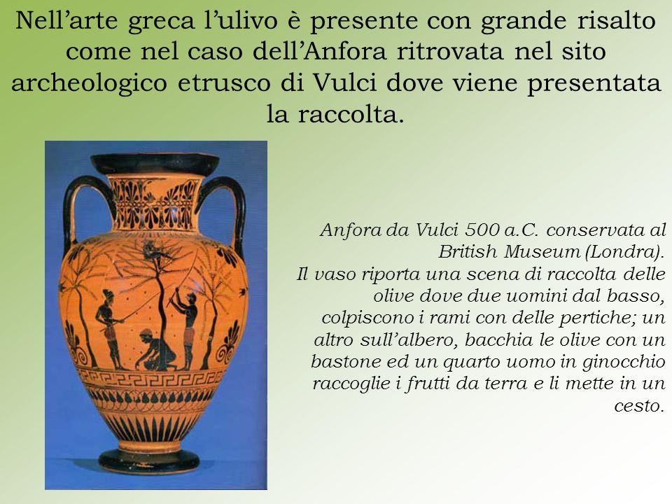 Nell'arte greca l'ulivo è presente con grande risalto come nel caso dell'Anfora ritrovata nel sito archeologico etrusco di Vulci dove viene presentata