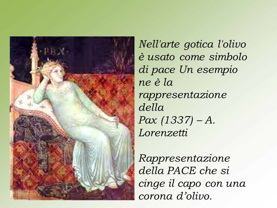 Nell'arte gotica l'olivo è usato come simbolo di pace Un esempio ne è la rappresentazione della Pax (1337) – A. Lorenzetti Rappresentazione della PACE