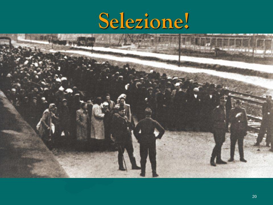19 Condizioni di trasporto La distanza dal luogo di provenienza degli arrestati ad Auschwitz a volte raggiungeva i 2.400 km. Durante questo percorso e