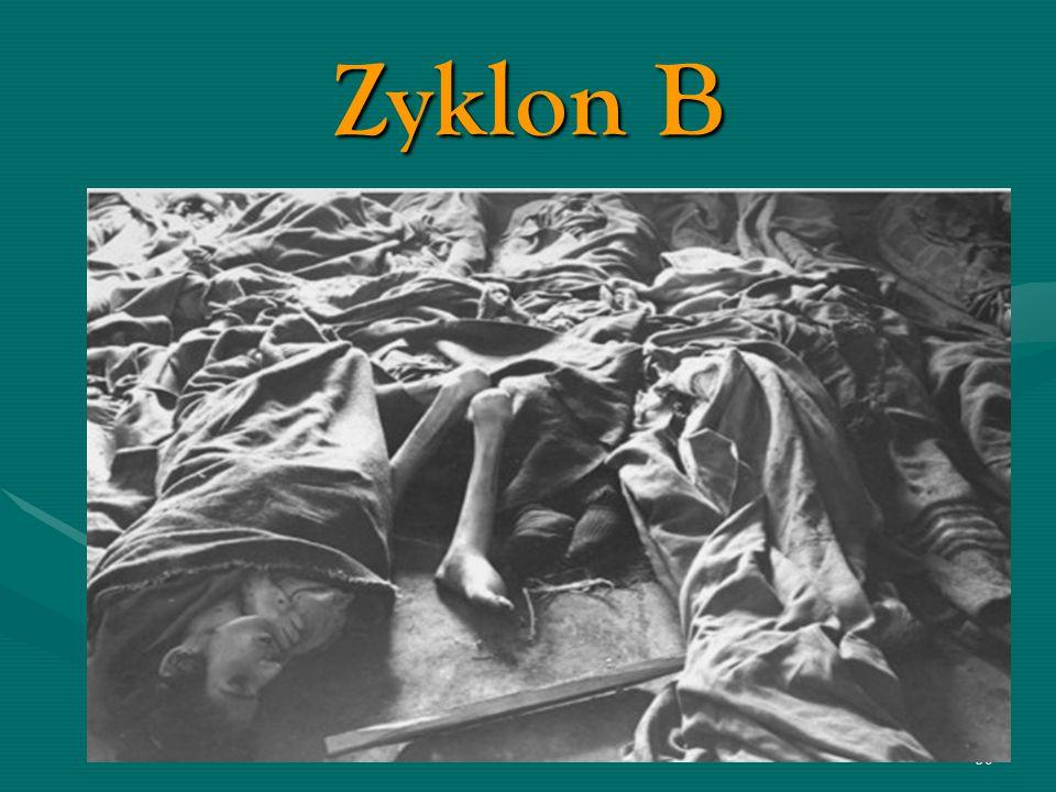 29 Zyklon B La ricerca del gas adatto per lo sterminio fu uno dei principali impegni del boia Hoss. Si chiamava Zyklon B, nome commerciale dell'acido