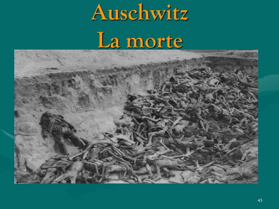 42 Auschwitz Comincia l'inferno