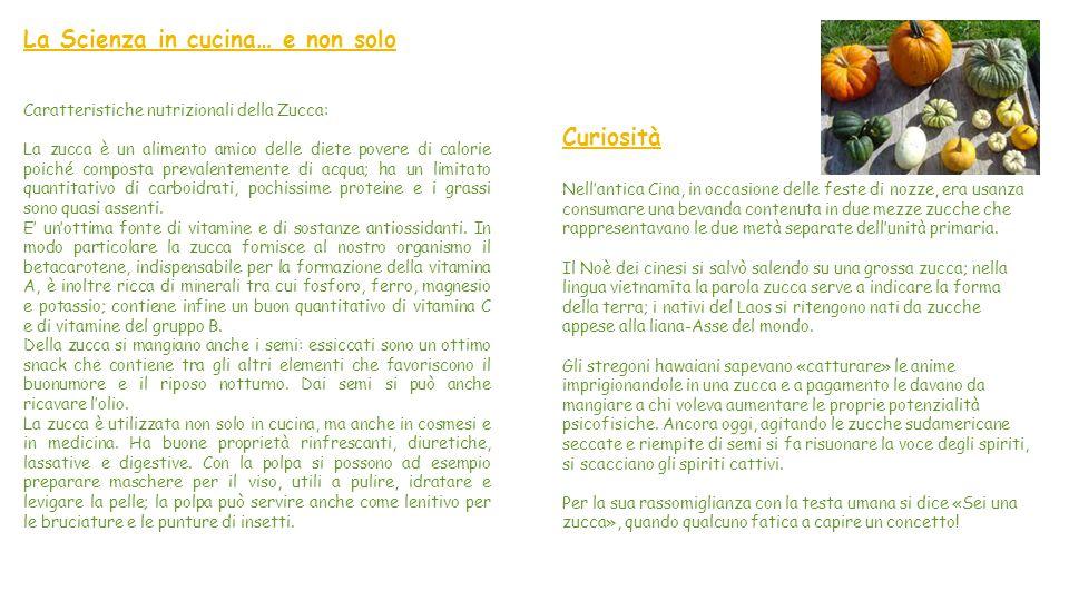 """La Zucca La zucca è coltivata soprattutto nella regione Lombardia, nella zona del mantovano, e in Campania. """"Mi Presento"""" La zucca appartiene alla gra"""
