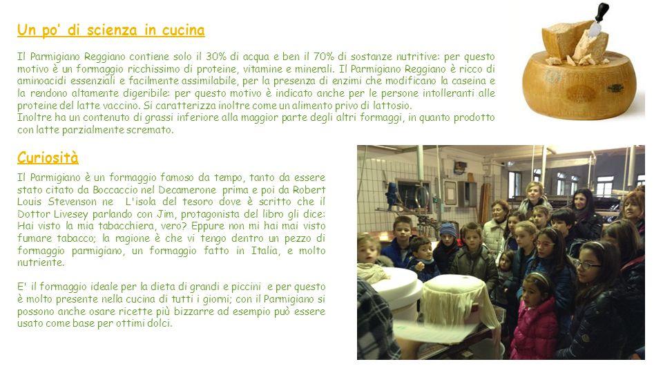 Il Parmigiano Reggiano Il Parmigiano Reggiano è il fiore all'occhiello del Made in Italy alimentare.