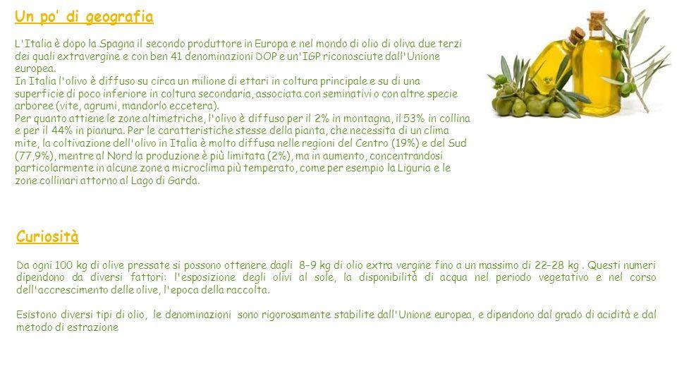 La produzione dell olio di oliva di maggiore importanza si basa su processi di estrazione esclusivamente meccanici: infatti un olio di oliva può essere definito vergine se per la sua produzione siano stati impiegati esclusivamente metodi meccanici.