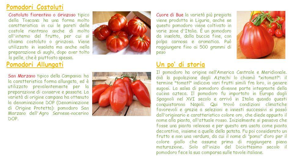 Il Pomodoro Il pomodoro della famiglia delle Solanaceae, è una pianta annuale i cui frutti sono alla base di molti piatti della cucina italiana,; è co
