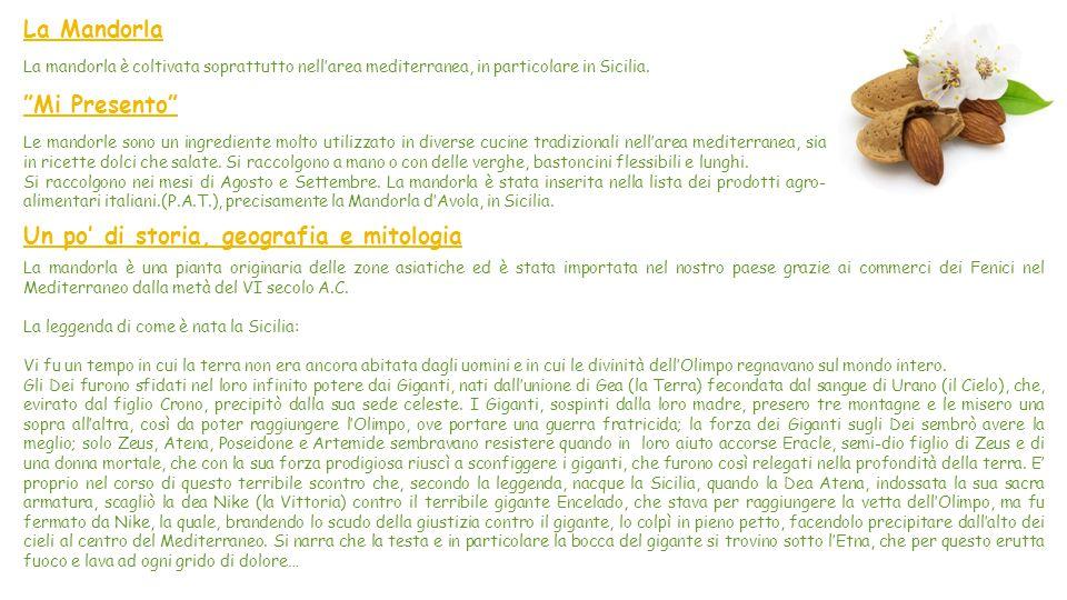 Cucina con Maria: Pomodori Ripieni Caratteristiche Difficoltà: facile Preparazione: 60 minuti Ingredienti 6 pomodori ramati Sale q.b Pepe q.b 300g di
