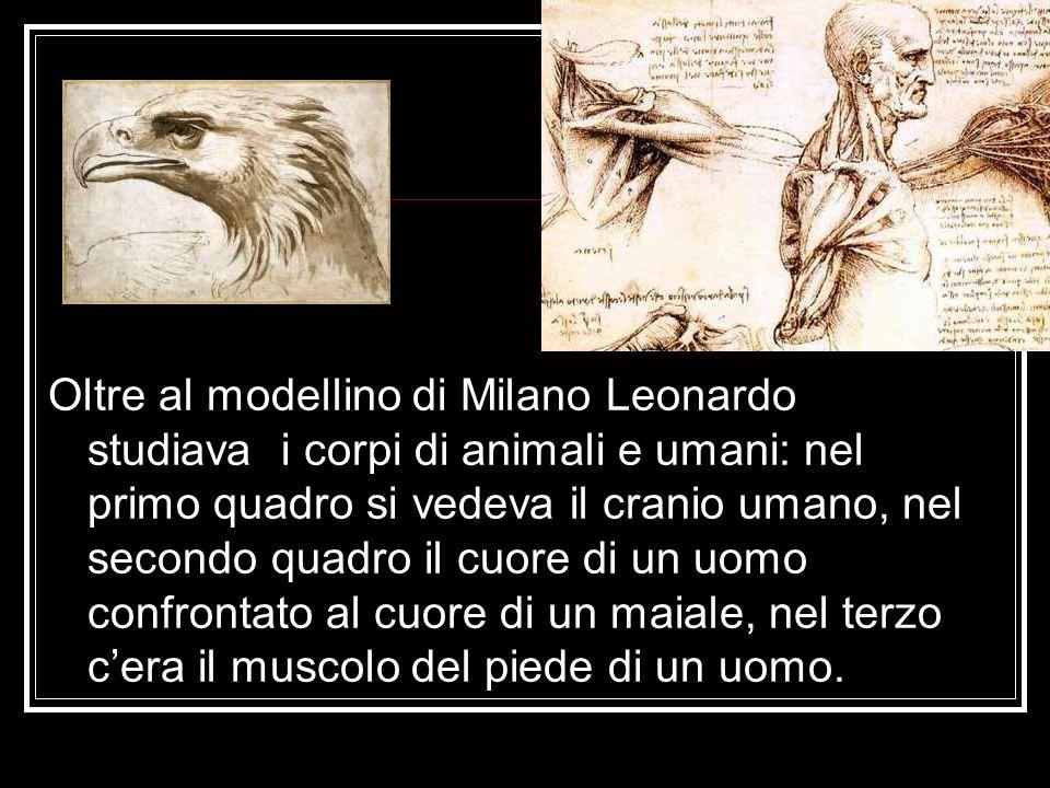 Oltre al modellino di Milano Leonardo studiava i corpi di animali e umani: nel primo quadro si vedeva il cranio umano, nel secondo quadro il cuore di