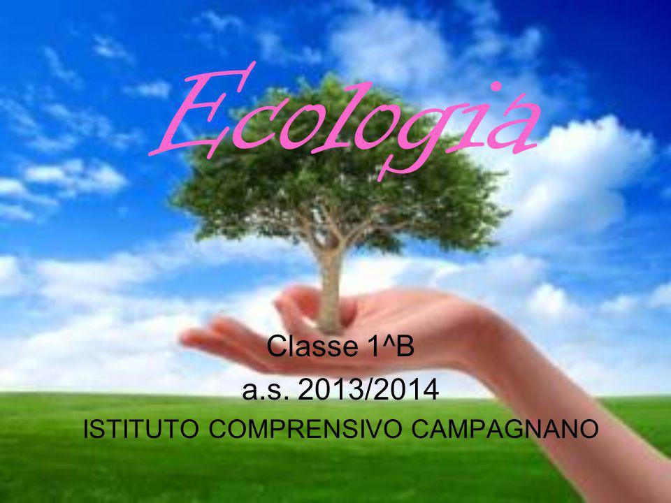 Ecologia Classe 1^B a.s. 2013/2014 ISTITUTO COMPRENSIVO CAMPAGNANO
