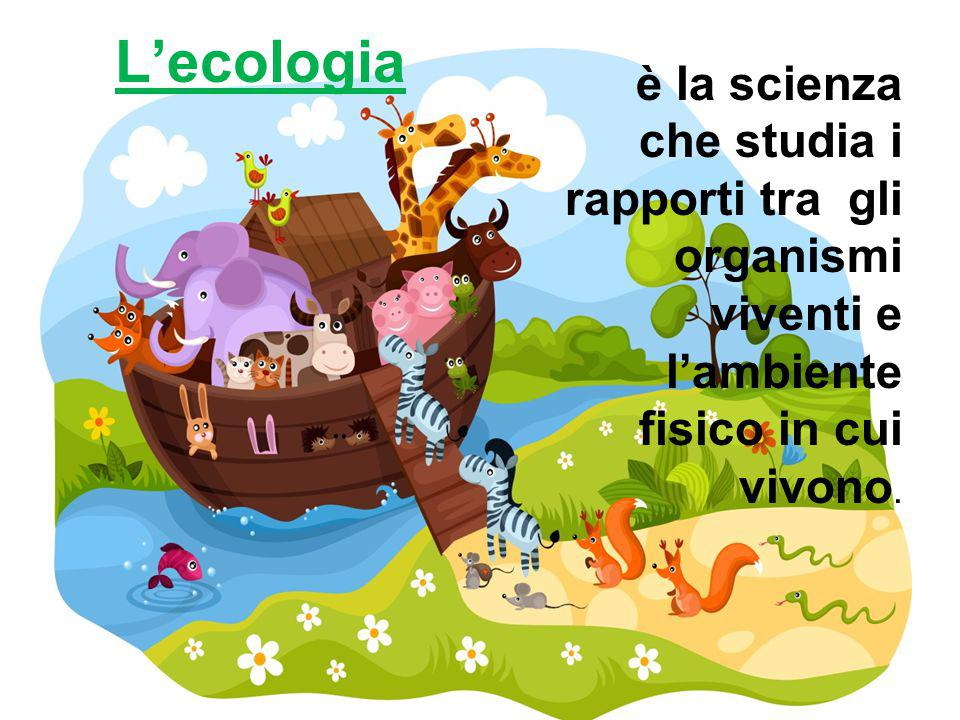 ECOSISTEMA L' insieme dei diversi fattori di un ambiente e delle relazioni che si stabiliscono tra essi si chiama
