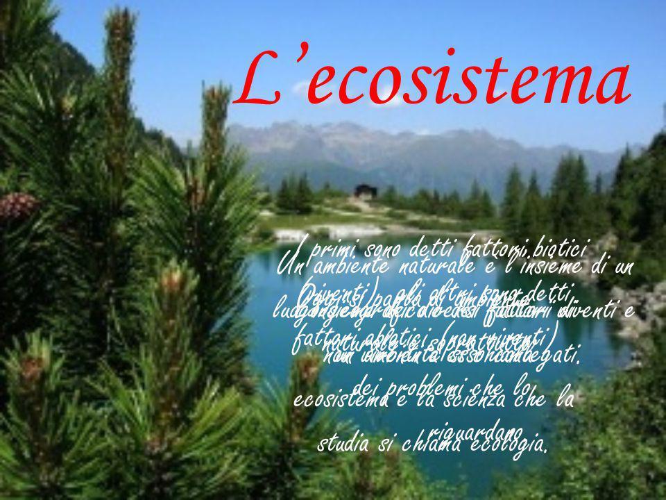 L'ecosistema Oggi si parla di ambiente naturale e soprattutto dei problemi che lo riguardano. Un ambiente naturale è l'insieme di un luogo geografico