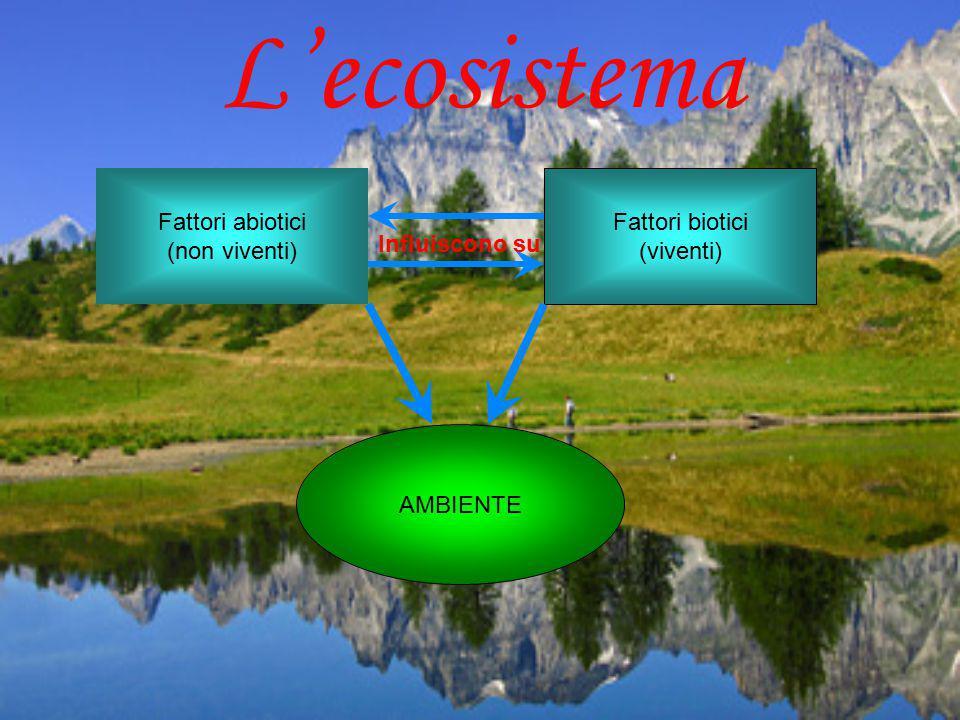 AMBIENTE Fattori abiotici (non viventi) Fattori biotici (viventi) Influiscono su L'ecosistema