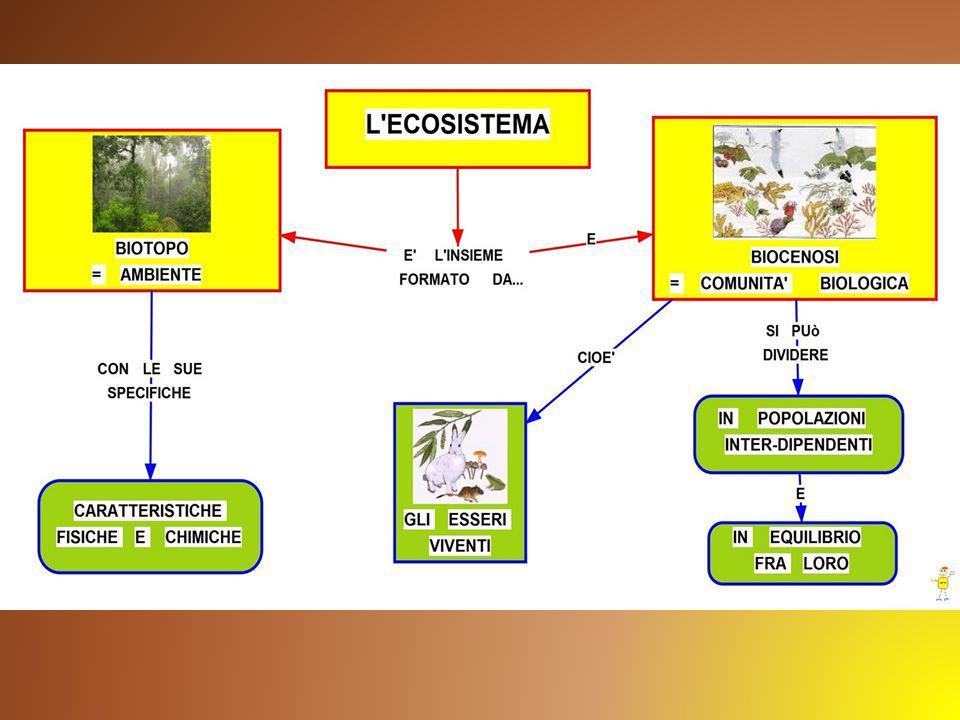 La vita nell'ecosistema