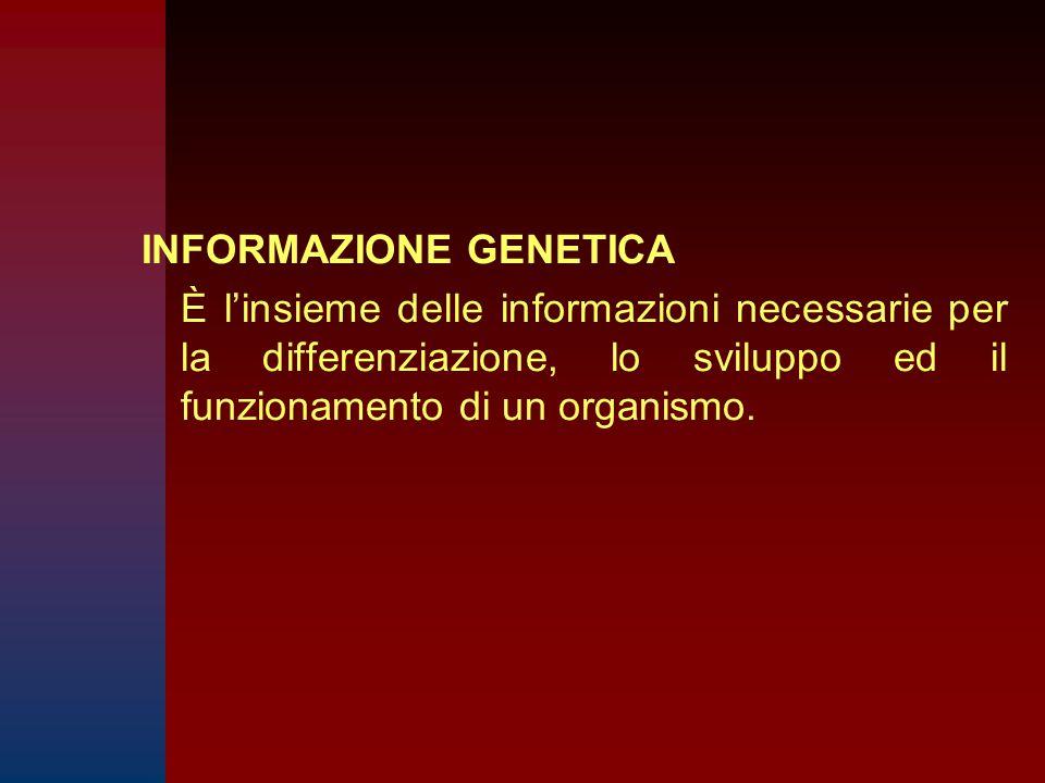 INFORMAZIONE GENETICA È l'insieme delle informazioni necessarie per la differenziazione, lo sviluppo ed il funzionamento di un organismo.