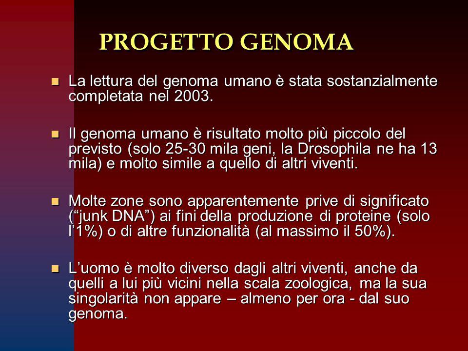 PROGETTO GENOMA n La lettura del genoma umano è stata sostanzialmente completata nel 2003. n Il genoma umano è risultato molto più piccolo del previst