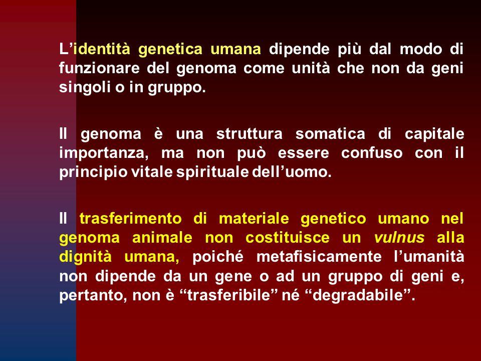 L'identità genetica umana dipende più dal modo di funzionare del genoma come unità che non da geni singoli o in gruppo. Il genoma è una struttura soma