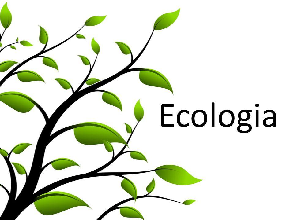 Bioma Il bioma è un insieme di ecosistemi accomunati dalla presenza dello stesso macroclima e che di regola sono caratterizzati dal medesimo tipo di vegetazione