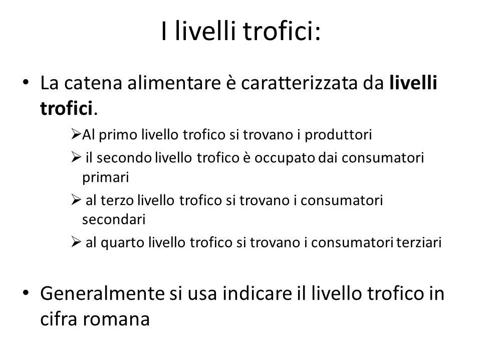 I livelli trofici: La catena alimentare è caratterizzata da livelli trofici.  Al primo livello trofico si trovano i produttori  il secondo livello t