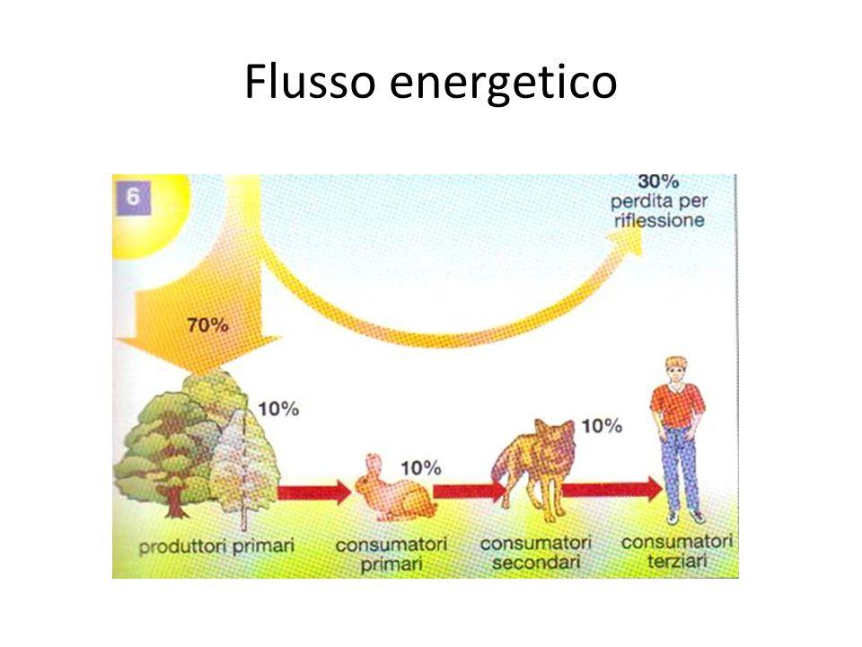 Flusso energetico