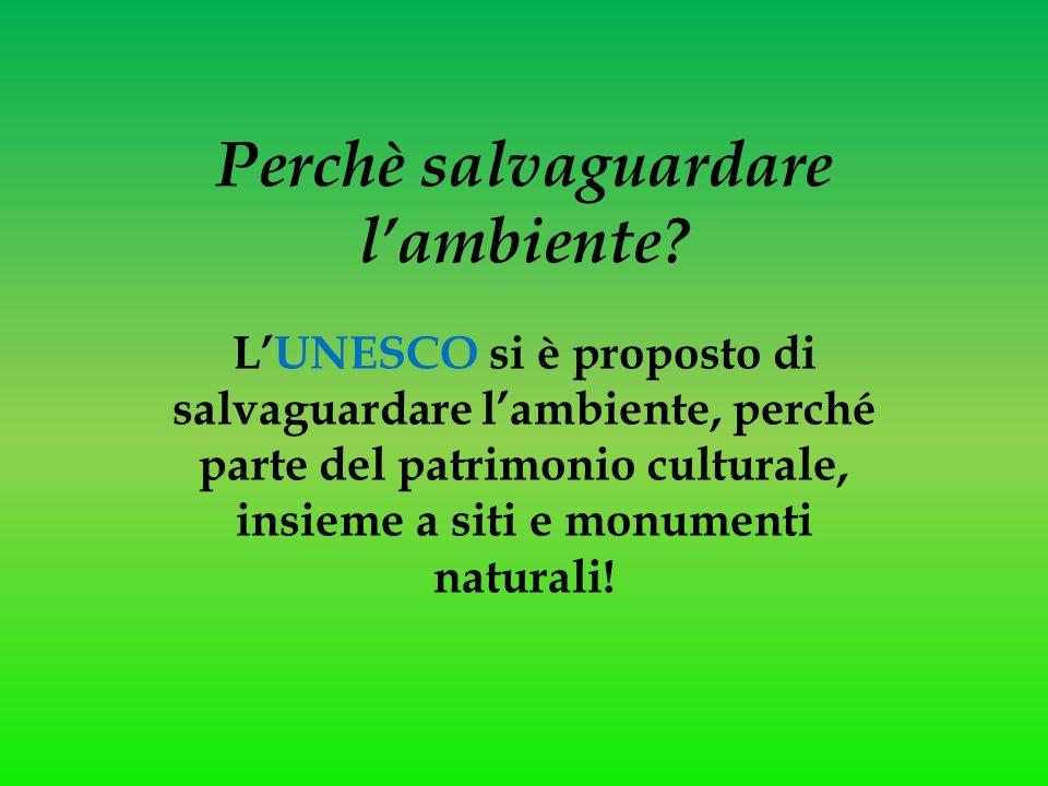 Perchè salvaguardare l'ambiente? L'UNESCO si è proposto di salvaguardare l'ambiente, perché parte del patrimonio culturale, insieme a siti e monumenti