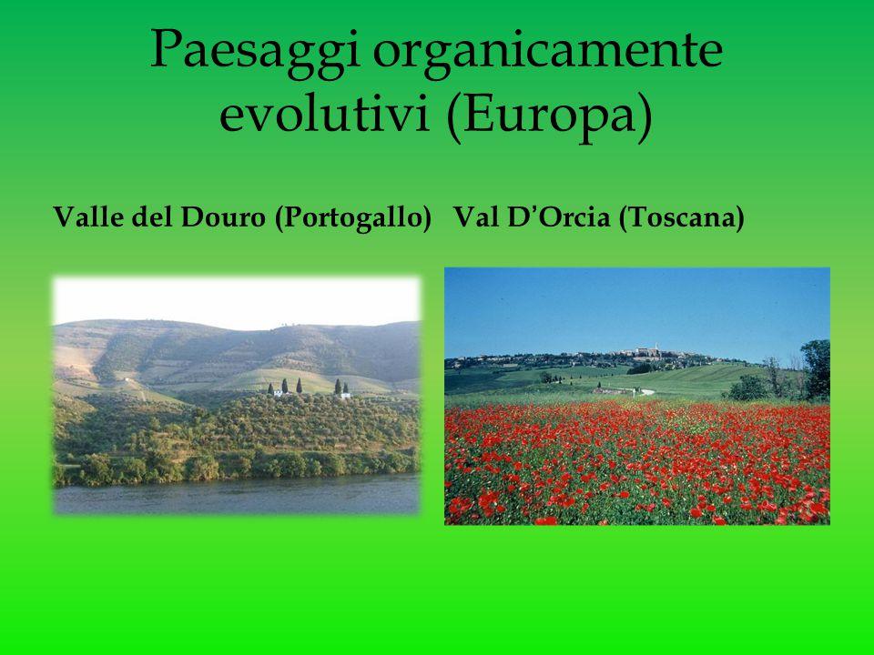 Paesaggi organicamente evolutivi (Europa) Valle del Douro (Portogallo)Val D'Orcia (Toscana)
