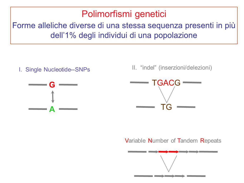 I.Single Nucleotide--SNPs G A II.