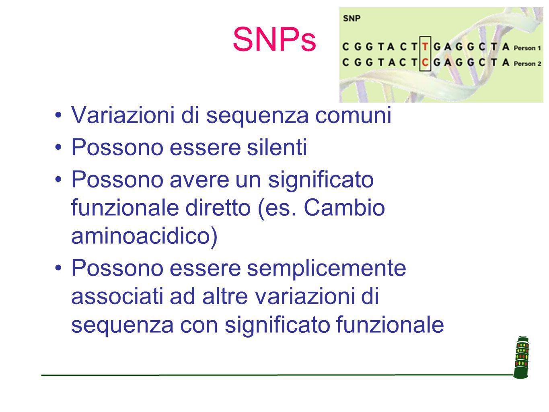 SNPs Variazioni di sequenza comuni Possono essere silenti Possono avere un significato funzionale diretto (es.