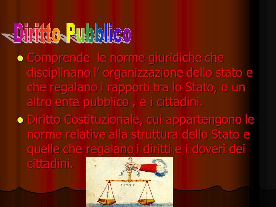Comprende le norme giuridiche che disciplinano l' organizzazione dello stato e che regalano i rapporti tra lo Stato, o un altro ente pubblico, e i cit