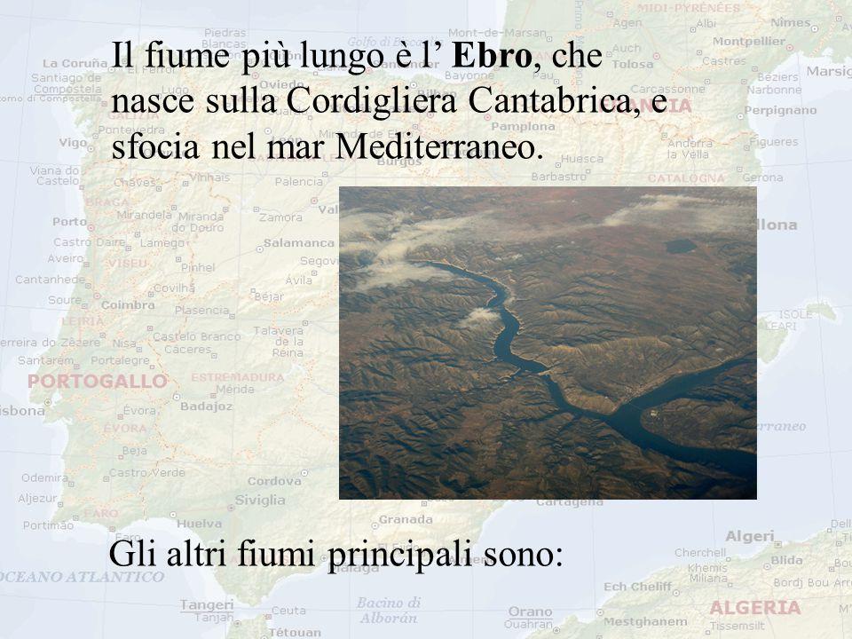 Il fiume più lungo è l' Ebro, che nasce sulla Cordigliera Cantabrica, e sfocia nel mar Mediterraneo. Gli altri fiumi principali sono:
