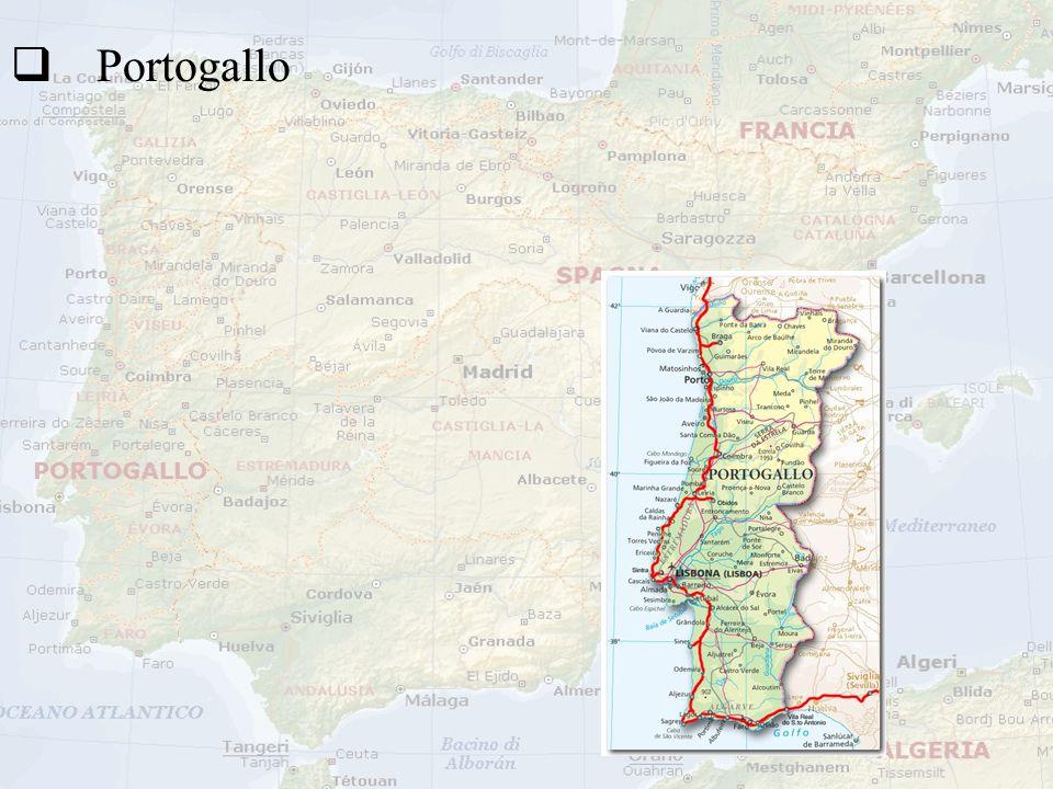 PP ortogallo