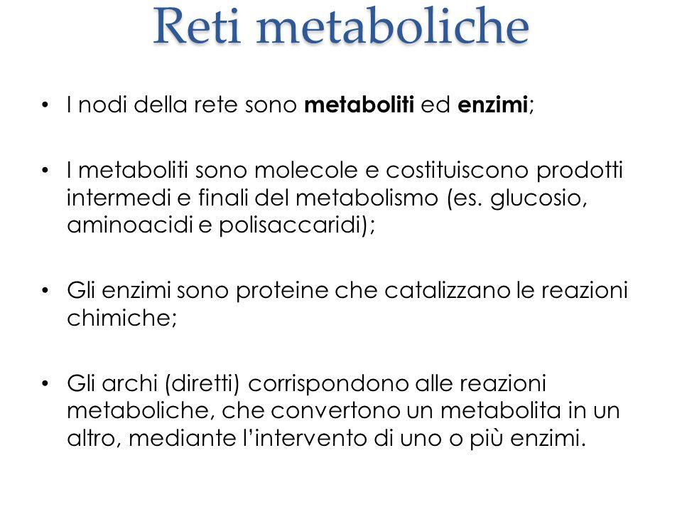 Reti metaboliche I nodi della rete sono metaboliti ed enzimi ; I metaboliti sono molecole e costituiscono prodotti intermedi e finali del metabolismo