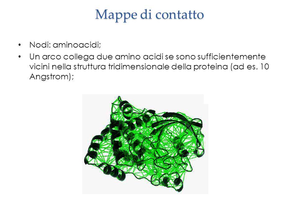 Mappe di contatto Nodi: aminoacidi; Un arco collega due amino acidi se sono sufficientemente vicini nella struttura tridimensionale della proteina (ad