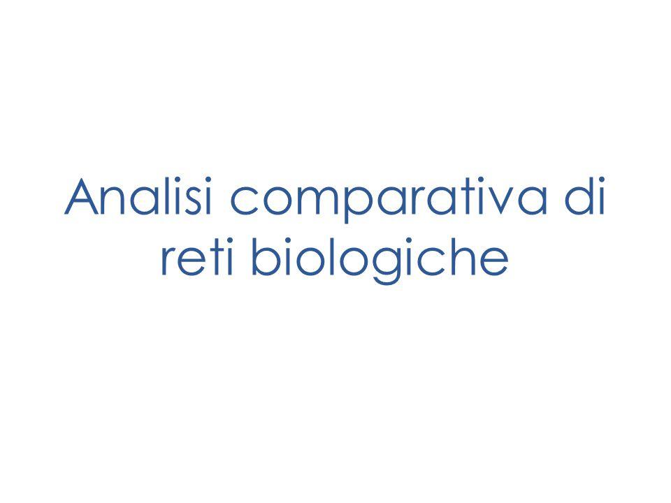 Analisi comparativa di reti biologiche