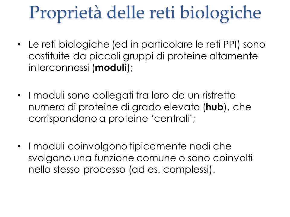 Proprietà delle reti biologiche Le reti biologiche (ed in particolare le reti PPI) sono costituite da piccoli gruppi di proteine altamente interconnessi ( moduli ); I moduli sono collegati tra loro da un ristretto numero di proteine di grado elevato ( hub ), che corrispondono a proteine 'centrali'; I moduli coinvolgono tipicamente nodi che svolgono una funzione comune o sono coinvolti nello stesso processo (ad es.
