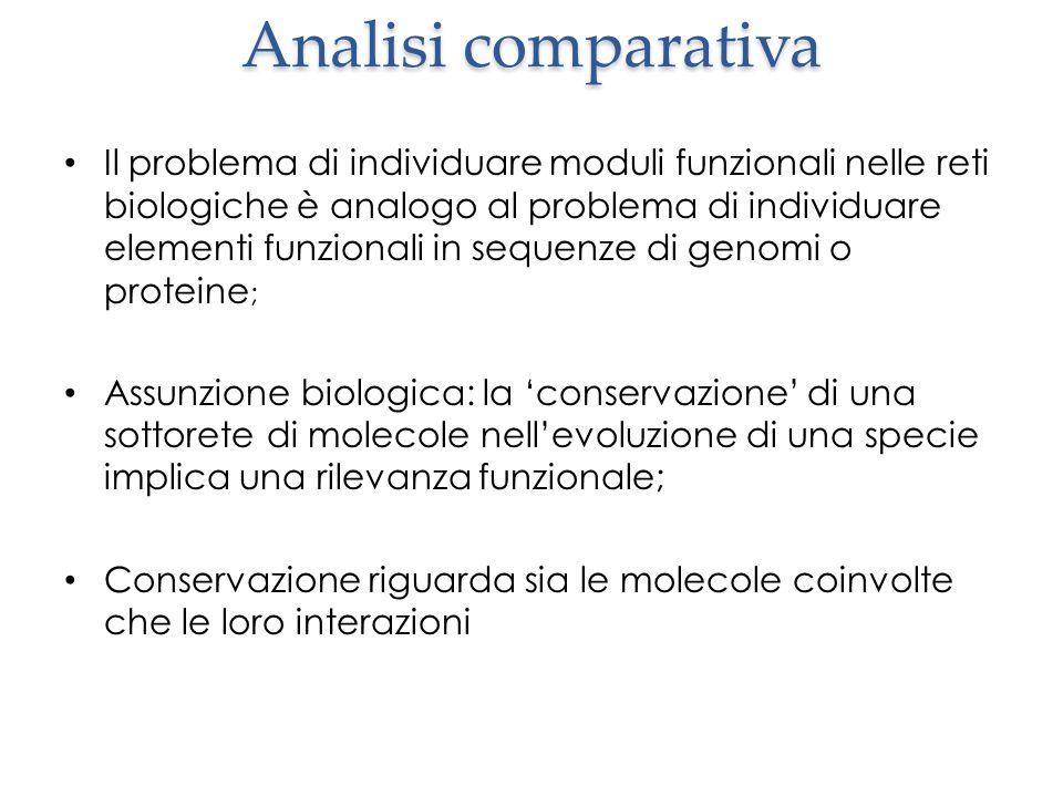 Analisi comparativa Il problema di individuare moduli funzionali nelle reti biologiche è analogo al problema di individuare elementi funzionali in seq