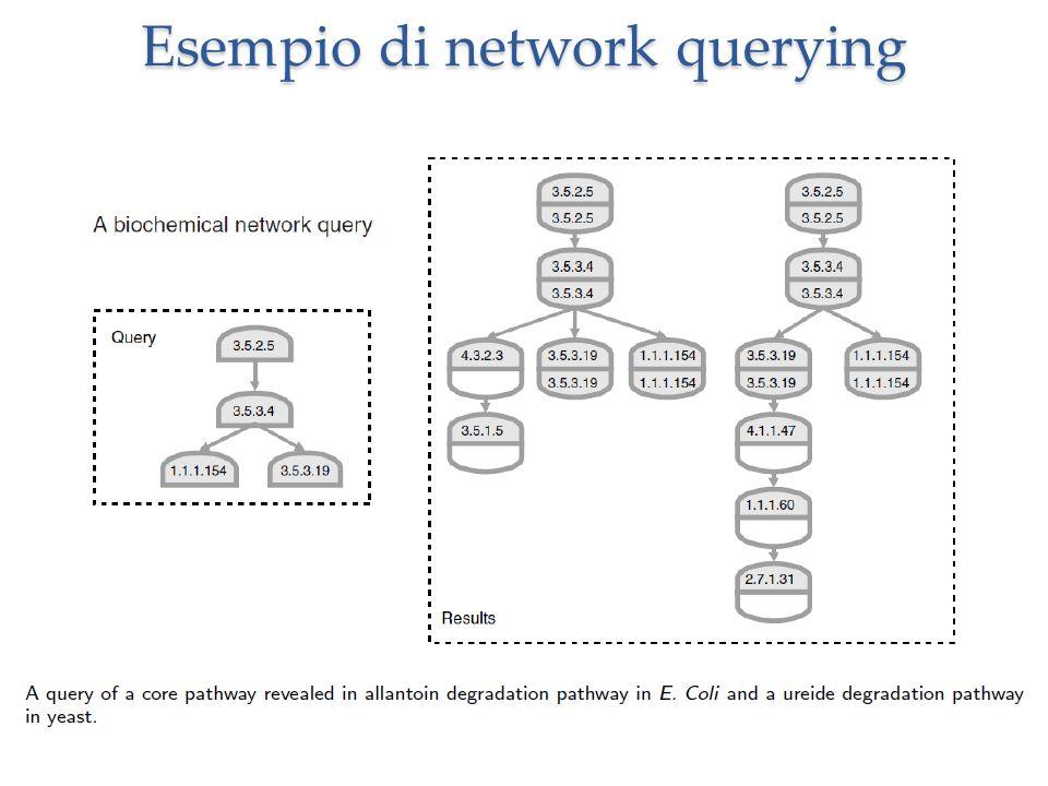 Esempio di network querying