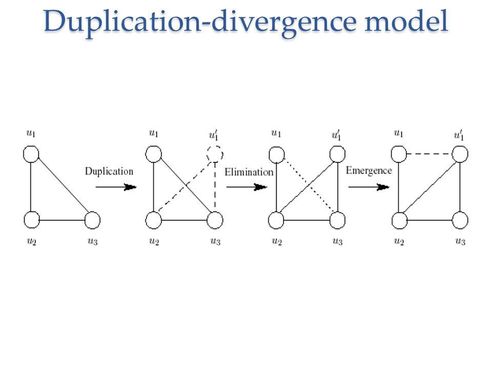 Duplication-divergence model