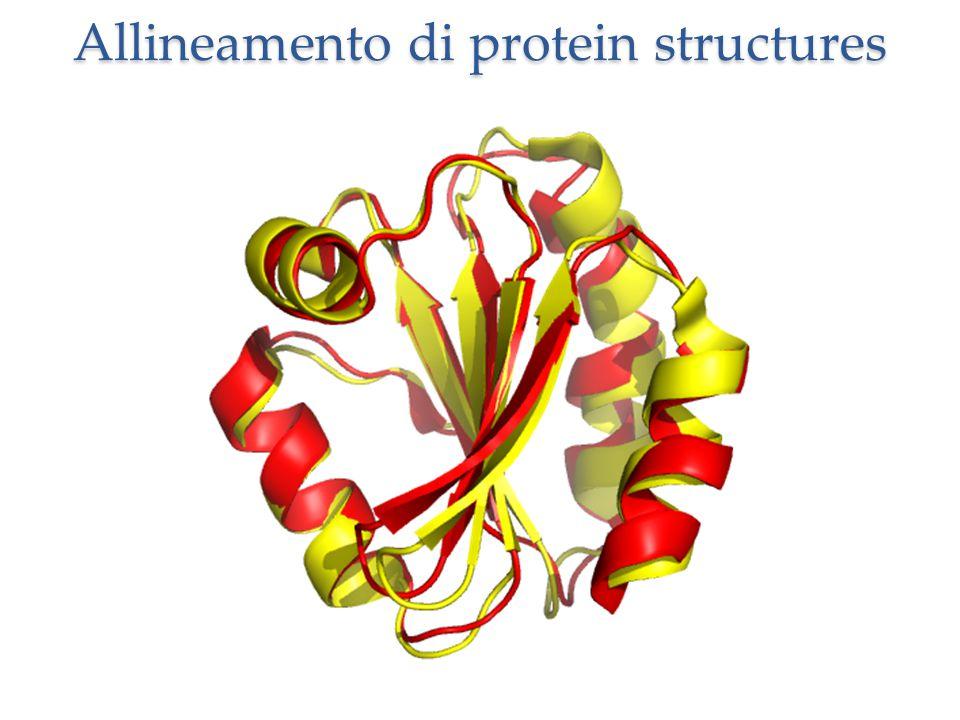 Allineamento di protein structures