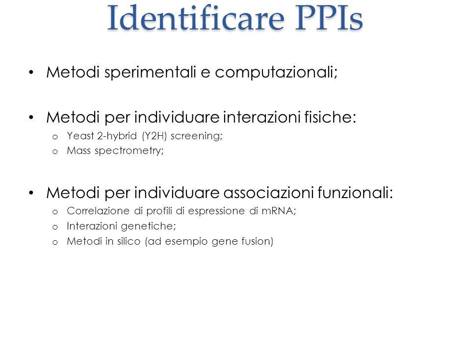 Identificare PPIs Metodi sperimentali e computazionali; Metodi per individuare interazioni fisiche: o Yeast 2-hybrid (Y2H) screening; o Mass spectrome