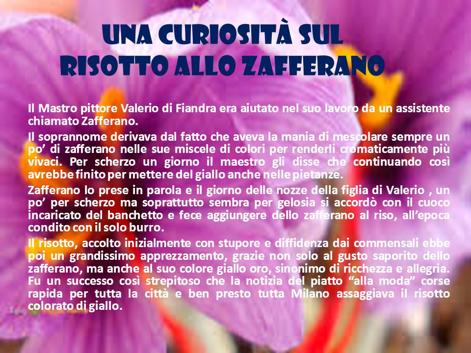 UNA CURIOSITÀ SUL RISOTTO ALLO ZAFFERANO Il Mastro pittore Valerio di Fiandra era aiutato nel suo lavoro da un assistente chiamato Zafferano.