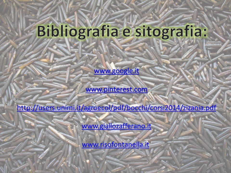 www.google.it www.pinterest.com http://users.unimi.it/agroecol/pdf/bocchi/corsi2014/zizania.pdf www.giallozafferano.it www.risofontanella.it