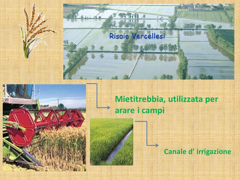 Risaie Vercellesi Mietitrebbia, utilizzata per arare i campi Canale d' irrigazione